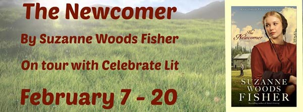 The Newcomer by Suzanne Woods Fisher - banner