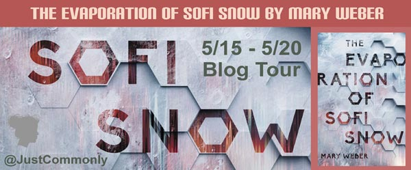 The Evaporation of Sofi Snow - banner