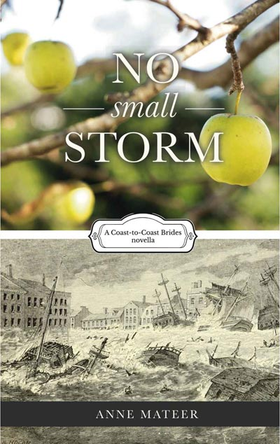 No Small Storms